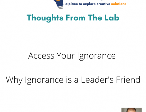 Access Your Ignorance – Why Ignorance is a Leader's Friend